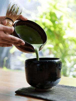 Matcha thee kopen