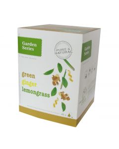 Box 48x Green Tea Lemongrass Ginger