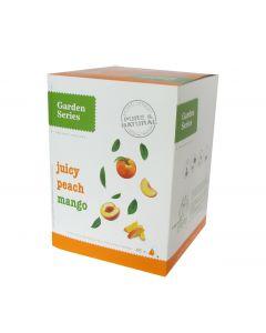 Box 48x Juicy Peach Mango
