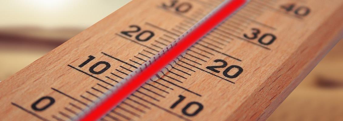 Thee temperatuur